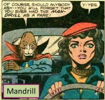 Mandrill01