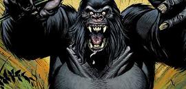 GorillaGroddTheFlash